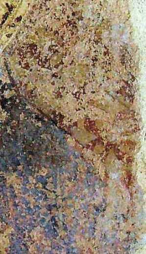 La stella sulla spalla della Vergine e lo sfondo rosso con gigli d'oro