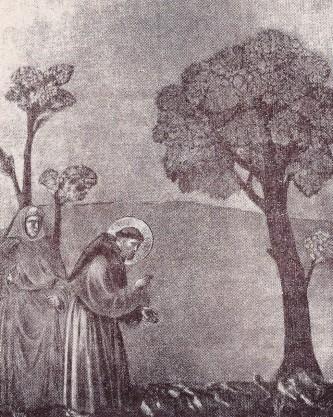 San Francesco con gli uccelli: meravigliosa predilezione...