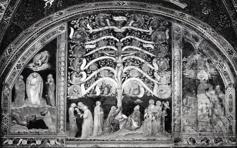 Antonio Vite (attr.), Albero della vita, Sala capitolare del Convento di San Francesco (Pistoia)